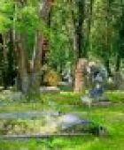 Service rund ums Grab: Was bieten Gärtnereien an?