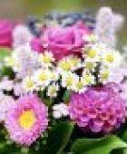 Blumengestecke: Diese Blumen aus dem Garten sind besonders schön