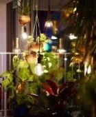 5 Tipps für schöne und effiziente Gartenbeleuchtung