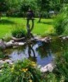 Gartenteich selbst anlegen: Tipps