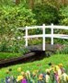 Luxusgarten: Ideen für den Garten