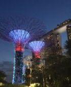 Stilvolle Gartenbeleuchtung mit LED-Lampen